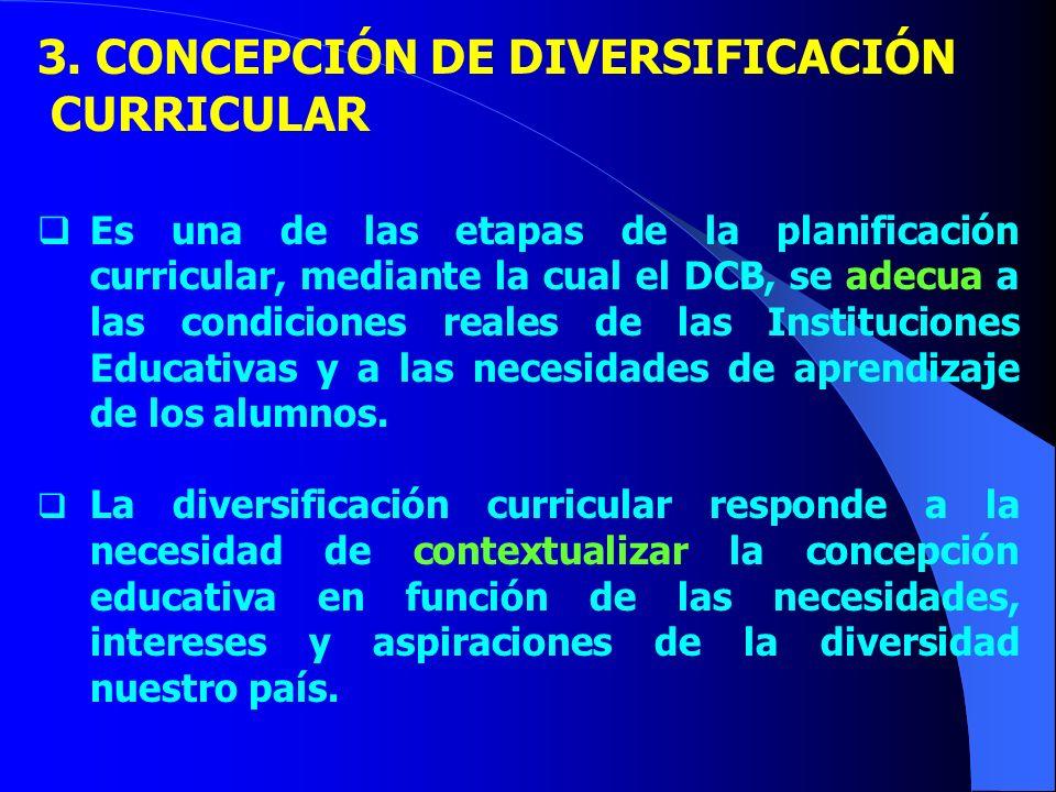 3. CONCEPCIÓN DE DIVERSIFICACIÓN CURRICULAR