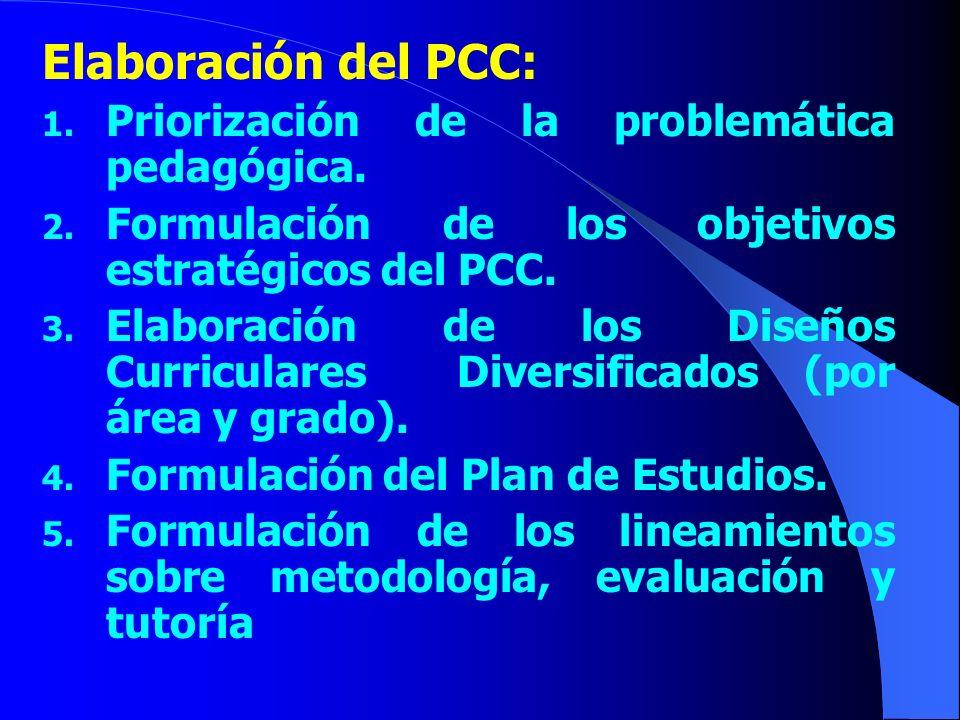 Elaboración del PCC: Priorización de la problemática pedagógica.