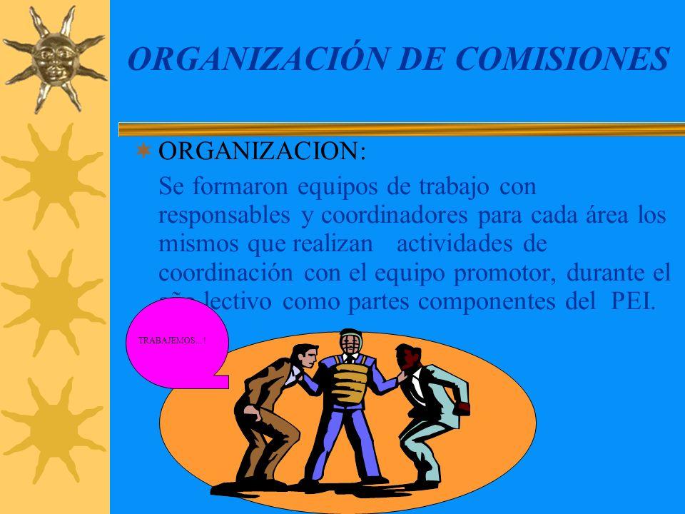 ORGANIZACIÓN DE COMISIONES