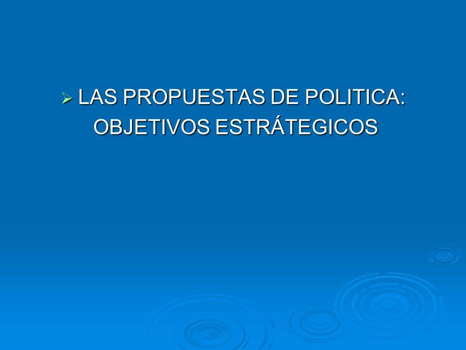 LAS PROPUESTAS DE POLITICA: OBJETIVOS ESTRÁTEGICOS