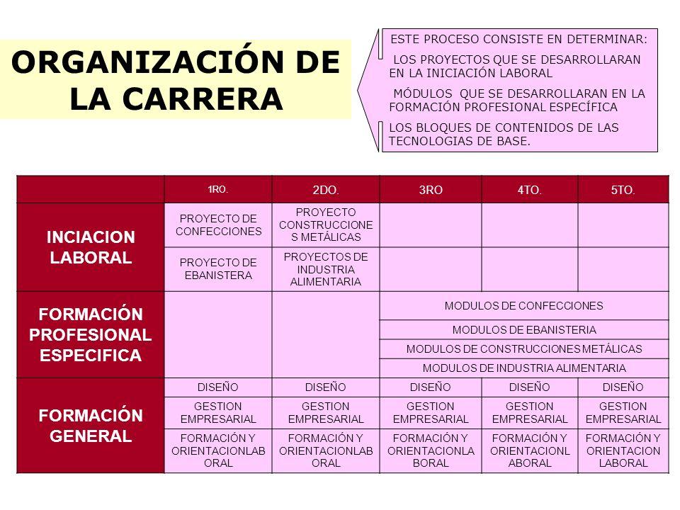 ORGANIZACIÓN DE LA CARRERA FORMACIÓN PROFESIONAL ESPECIFICA