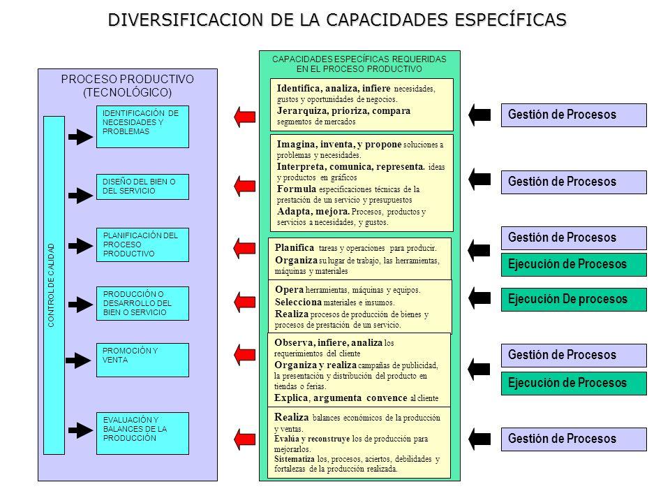 DIVERSIFICACION DE LA CAPACIDADES ESPECÍFICAS