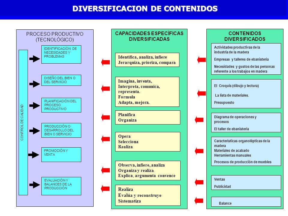 DIVERSIFICACION DE CONTENIDOS
