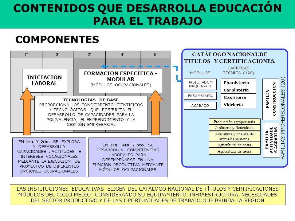 CONTENIDOS QUE DESARROLLA EDUCACIÓN PARA EL TRABAJO
