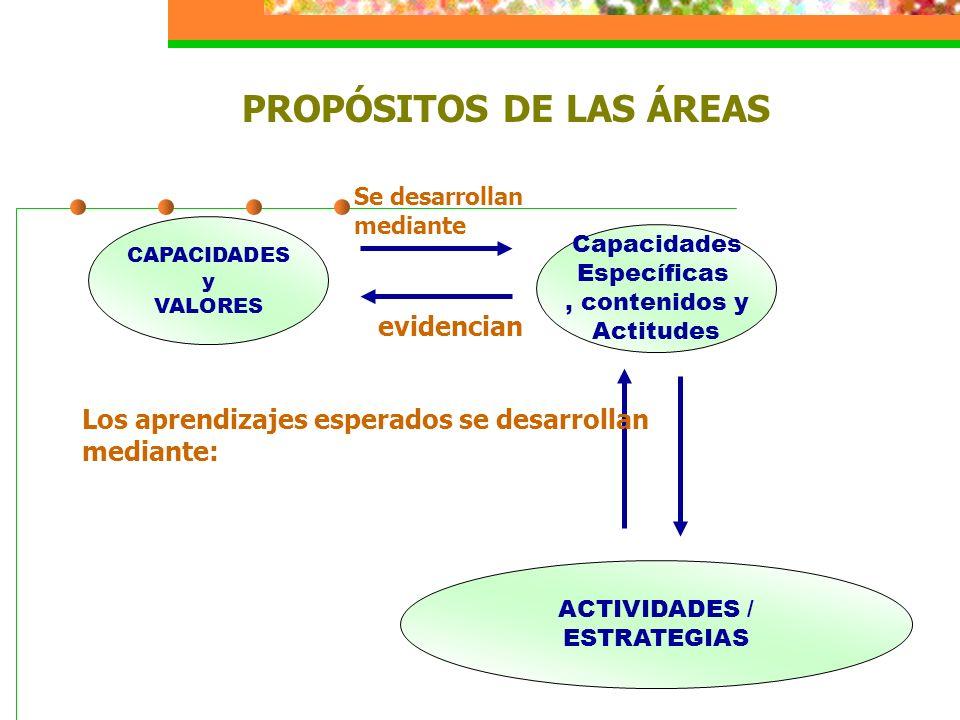 PROPÓSITOS DE LAS ÁREAS