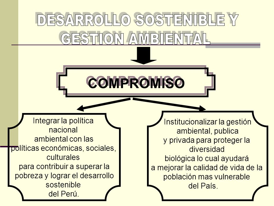 DESARROLLO SOSTENIBLE Y GESTION AMBIENTAL