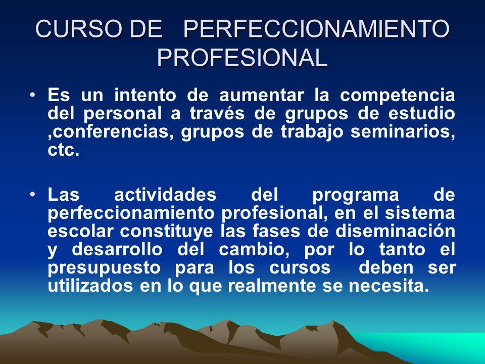 CURSO DE PERFECCIONAMIENTO PROFESIONAL