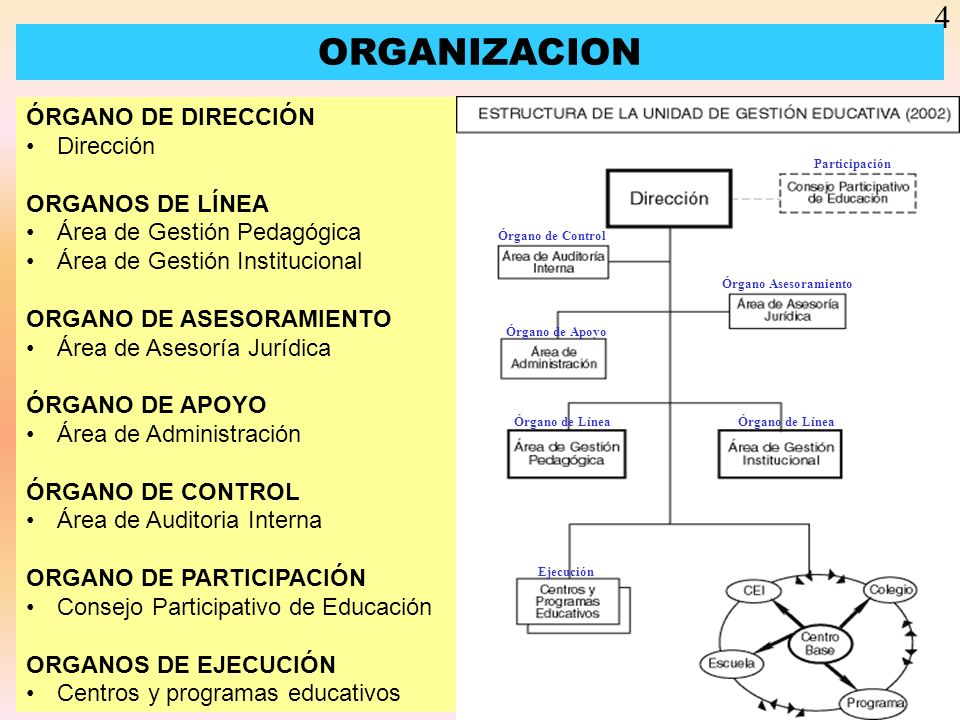 ORGANIZACION 4 ÓRGANO DE DIRECCIÓN Dirección ORGANOS DE LÍNEA