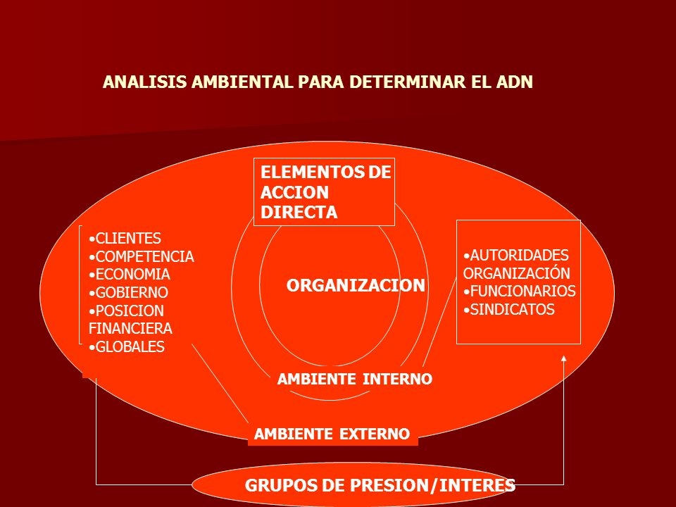 ANALISIS AMBIENTAL PARA DETERMINAR EL ADN