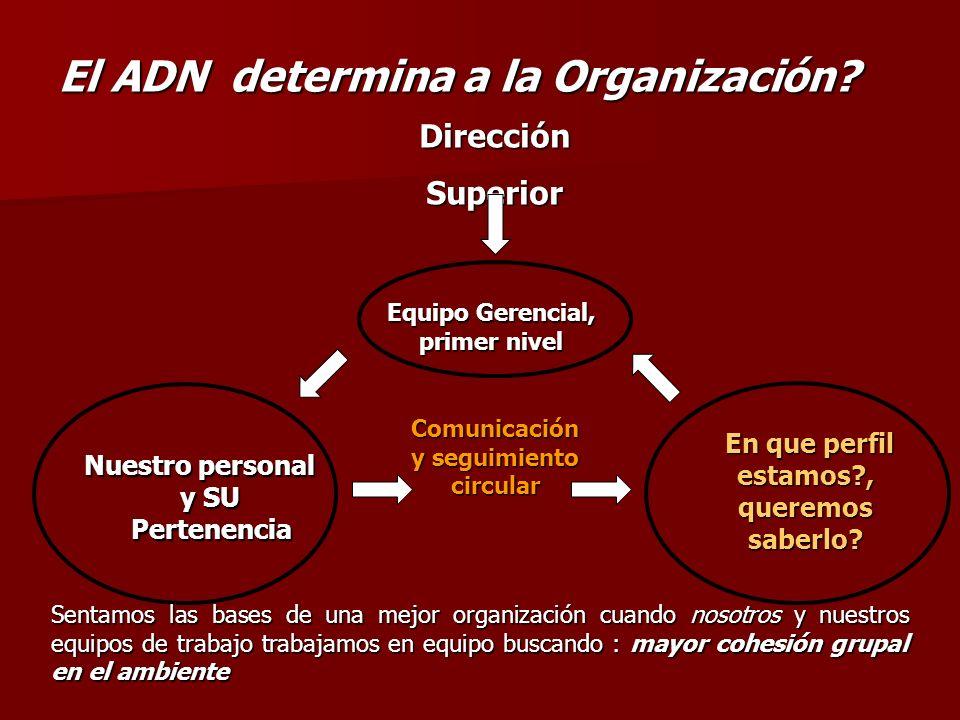 El ADN determina a la Organización