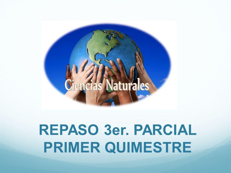 REPASO 3er. PARCIAL PRIMER QUIMESTRE