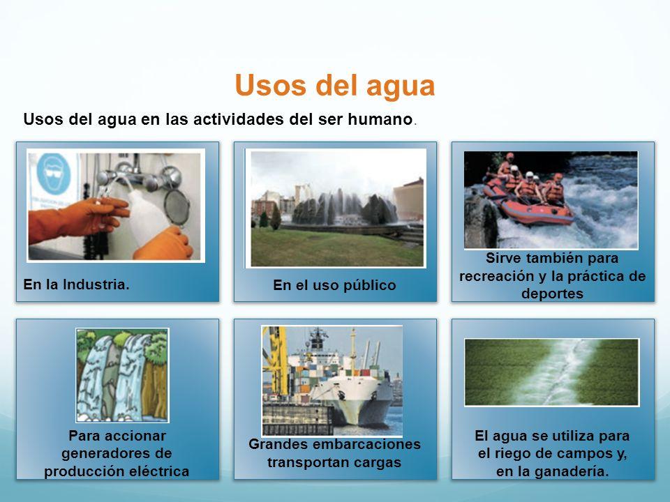 Usos del agua Usos del agua en las actividades del ser humano.