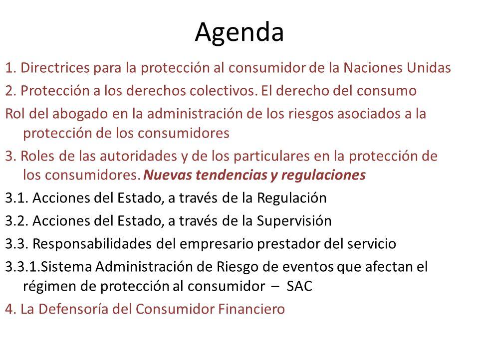 Agenda 1. Directrices para la protección al consumidor de la Naciones Unidas. 2. Protección a los derechos colectivos. El derecho del consumo.