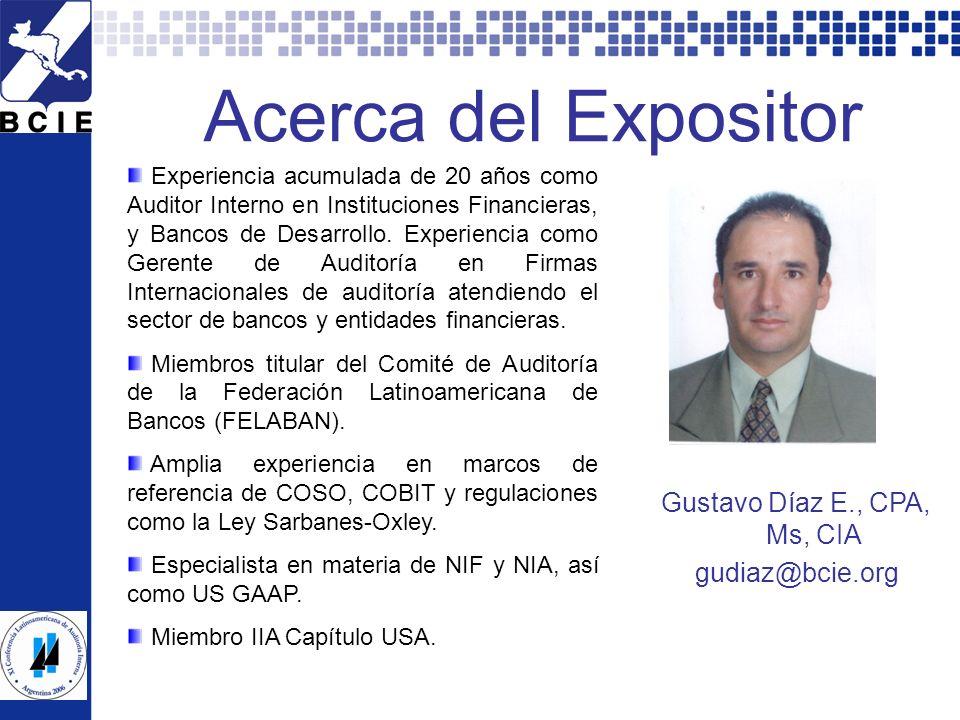Gustavo Díaz E., CPA, Ms, CIA