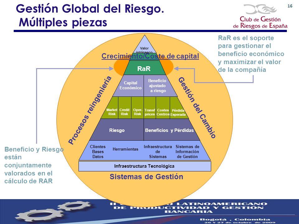 Gestión Global del Riesgo. Múltiples piezas