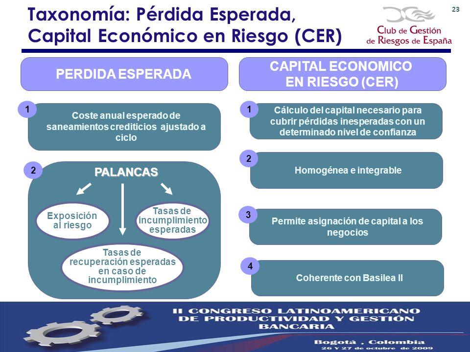 Taxonomía: Pérdida Esperada, Capital Económico en Riesgo (CER)