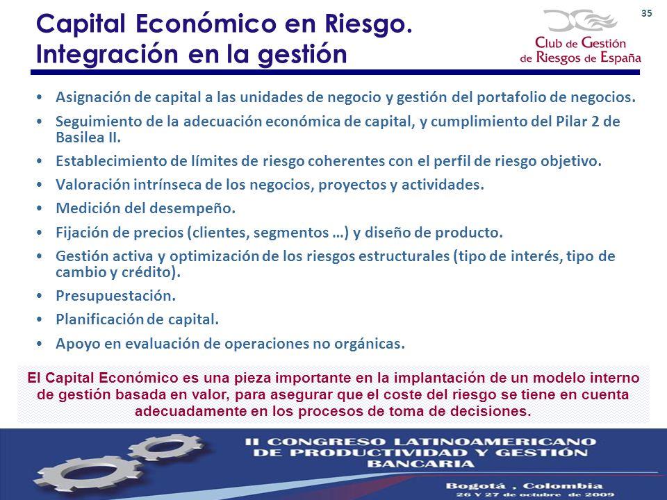 Capital Económico en Riesgo. Integración en la gestión