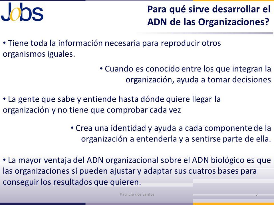 Para qué sirve desarrollar el ADN de las Organizaciones
