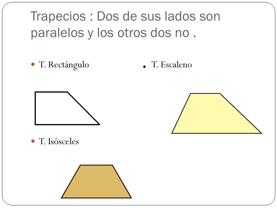 Trapecios : Dos de sus lados son paralelos y los otros dos no .