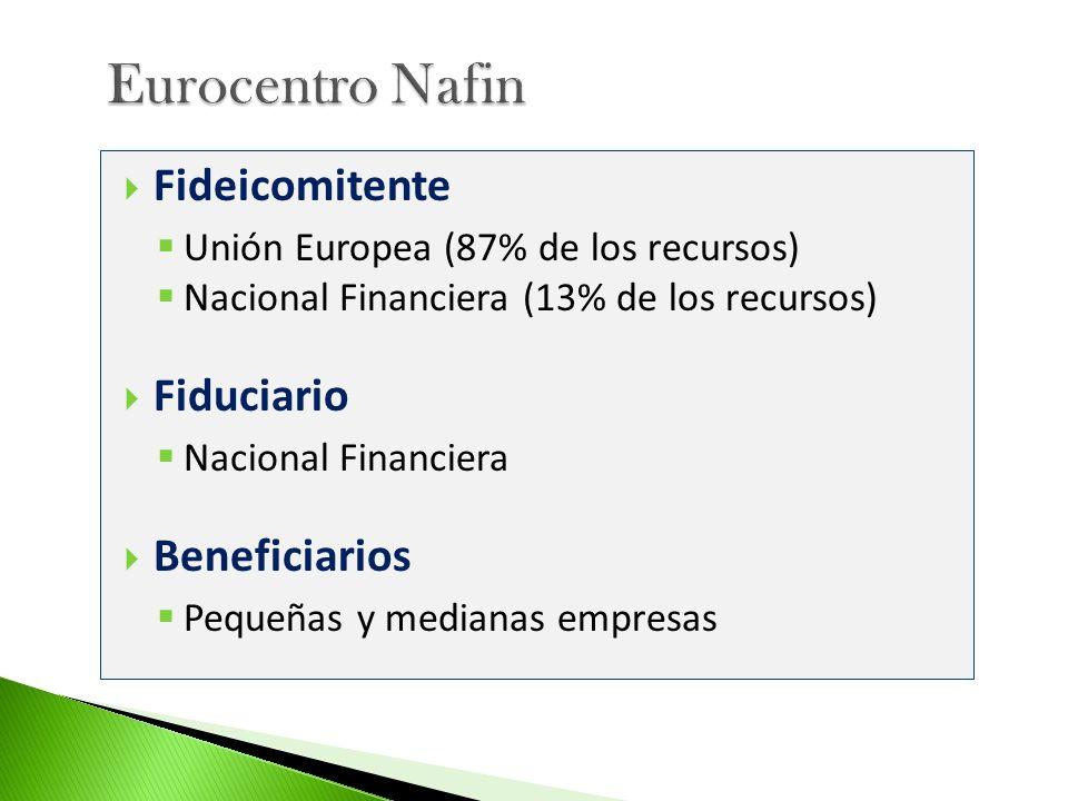 Eurocentro Nafin Fideicomitente Fiduciario Beneficiarios