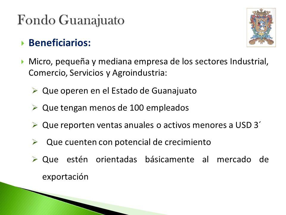 Fondo Guanajuato Beneficiarios: