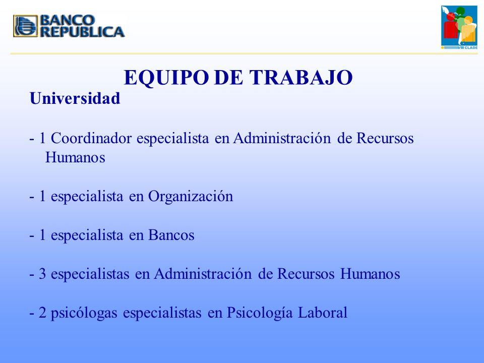 EQUIPO DE TRABAJO Universidad
