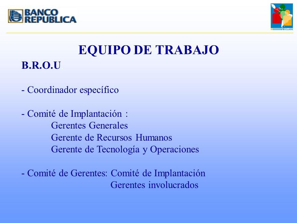 EQUIPO DE TRABAJO B.R.O.U. - Coordinador específico