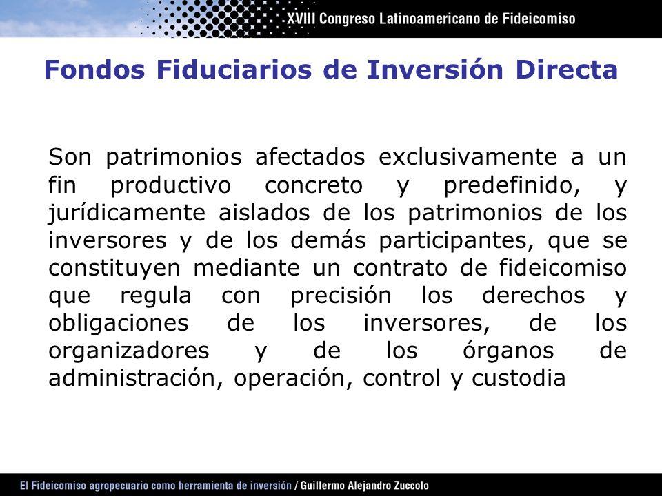 Fondos Fiduciarios de Inversión Directa