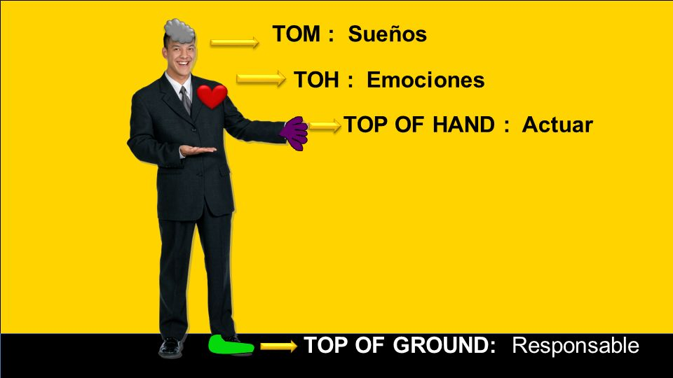 TOM : Sueños TOH : Emociones TOP OF HAND : Actuar TOP OF GROUND: Responsable