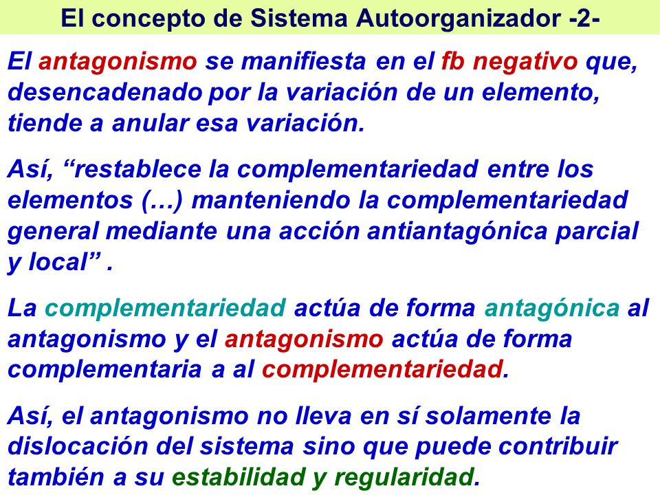 El concepto de Sistema Autoorganizador -2-