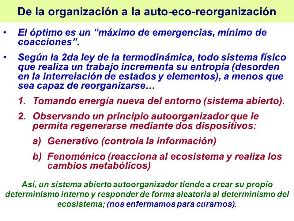 De la organización a la auto-eco-reorganización