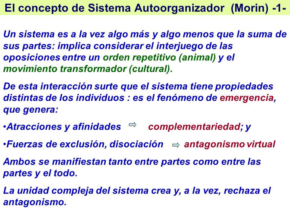 El concepto de Sistema Autoorganizador (Morin) -1-