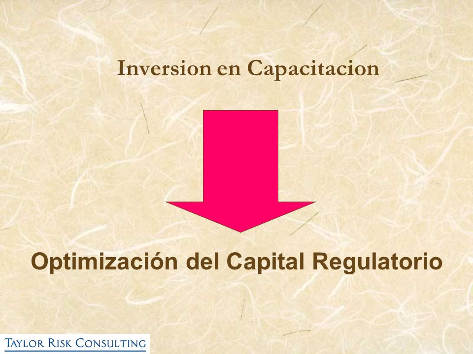 Inversion en Capacitacion Optimización del Capital Regulatorio