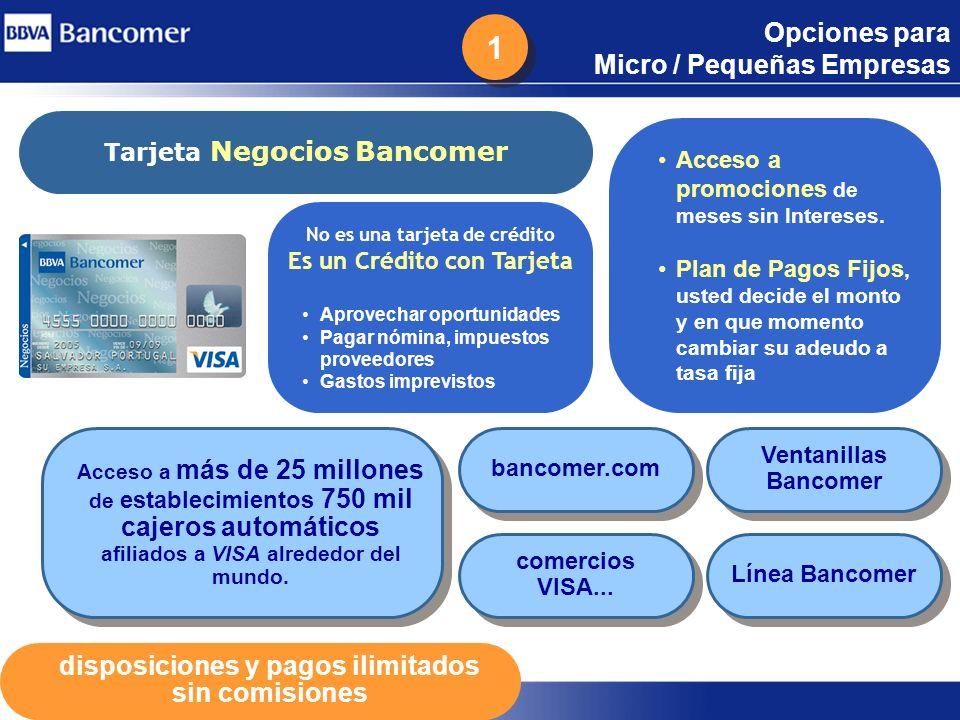 Opciones para Micro / Pequeñas Empresas