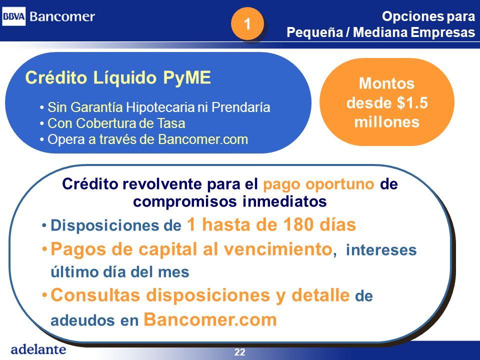 Opciones para Pequeña / Mediana Empresas