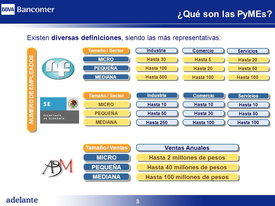 ¿Qué son las PyMEs Existen diversas definiciones, siendo las más representativas: Tamaño / Sector.