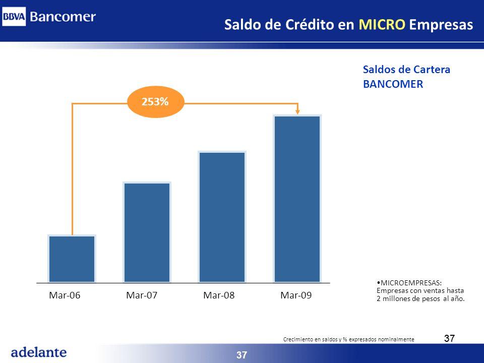 Saldo de Crédito en MICRO Empresas