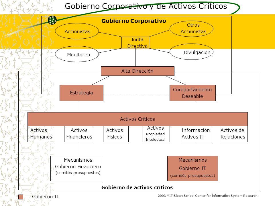 Gobierno Corporativo y de Activos Críticos