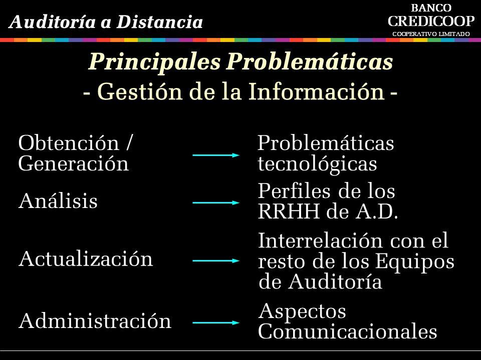 Principales Problemáticas - Gestión de la Información -