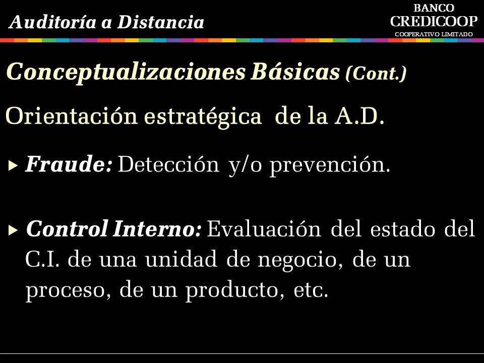 Conceptualizaciones Básicas (Cont.)
