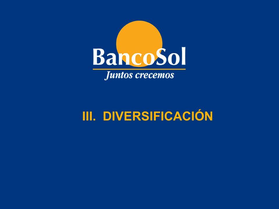 III. DIVERSIFICACIÓN