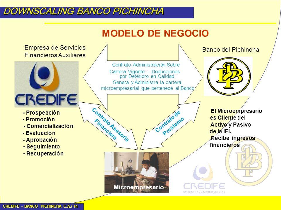 MODELO DE NEGOCIO DOWNSCALING BANCO PICHINCHA Empresa de Servicios