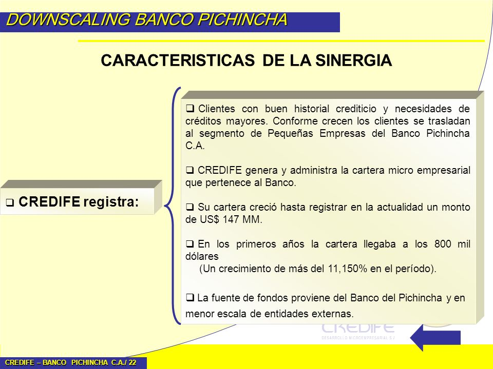 CARACTERISTICAS DE LA SINERGIA