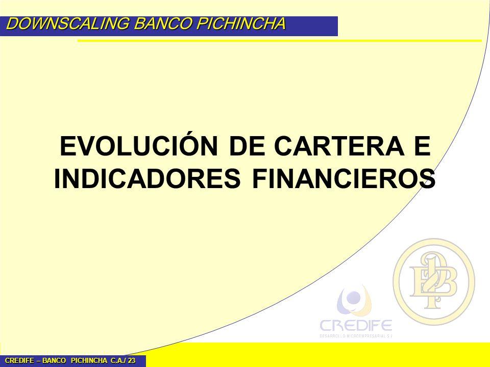 EVOLUCIÓN DE CARTERA E INDICADORES FINANCIEROS