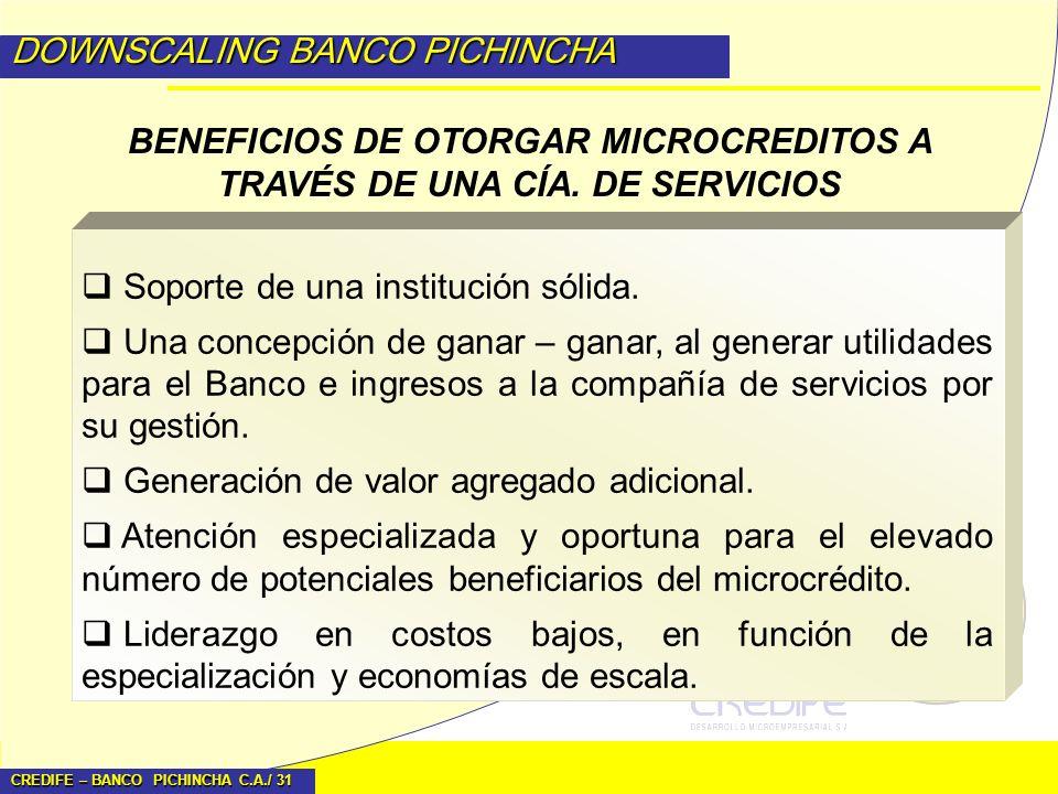 BENEFICIOS DE OTORGAR MICROCREDITOS A TRAVÉS DE UNA CÍA. DE SERVICIOS