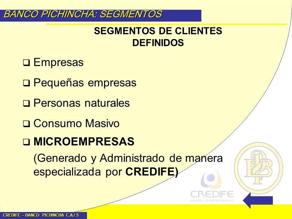 SEGMENTOS DE CLIENTES DEFINIDOS