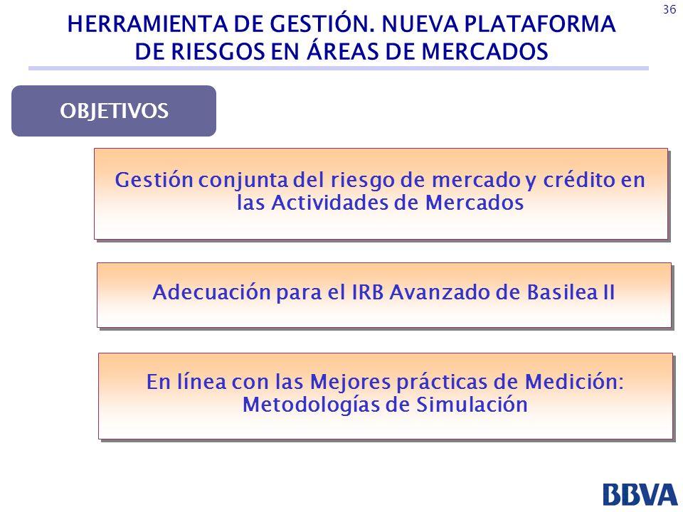 Adecuación para el IRB Avanzado de Basilea II