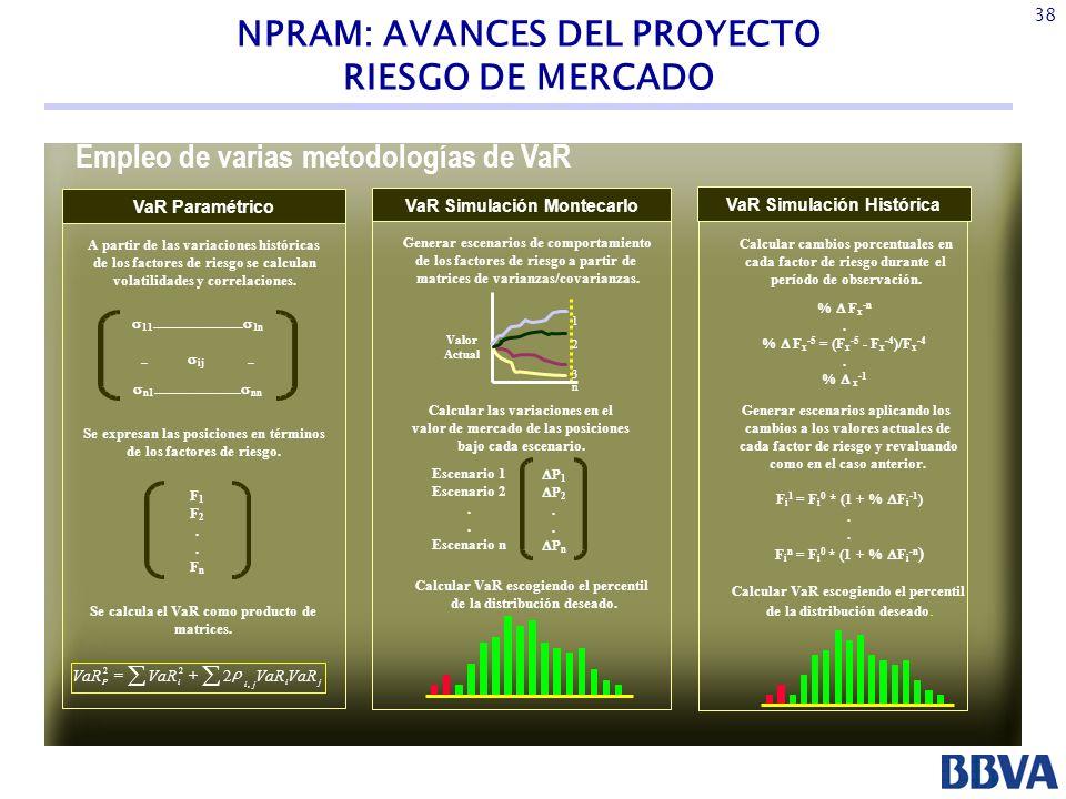NPRAM: AVANCES DEL PROYECTO Empleo de varias metodologías de VaR