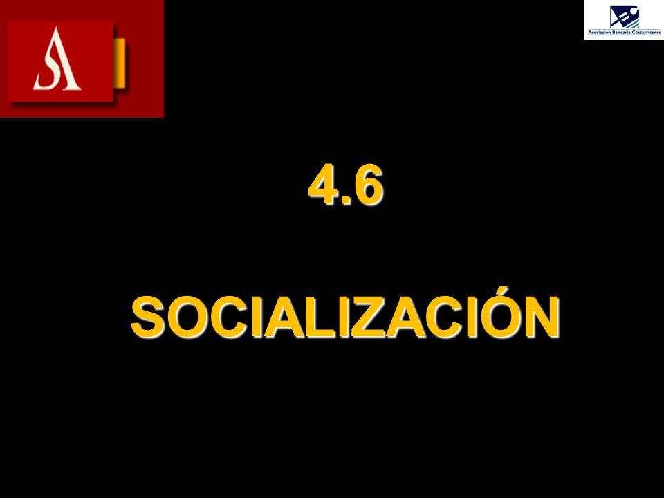 4.6 SOCIALIZACIÓN