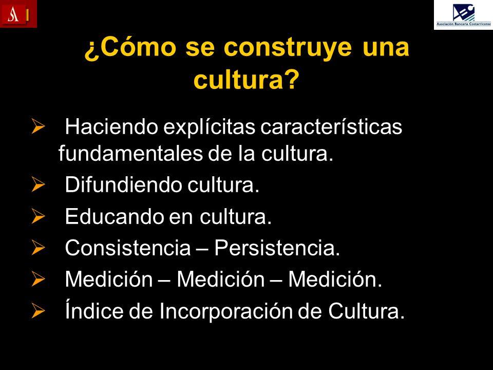 ¿Cómo se construye una cultura